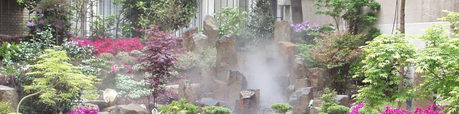 L'eau dans nos jardins: entre vie et rêverie