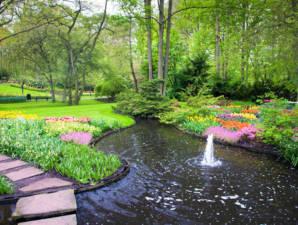 Fontaine jet moussant bassin
