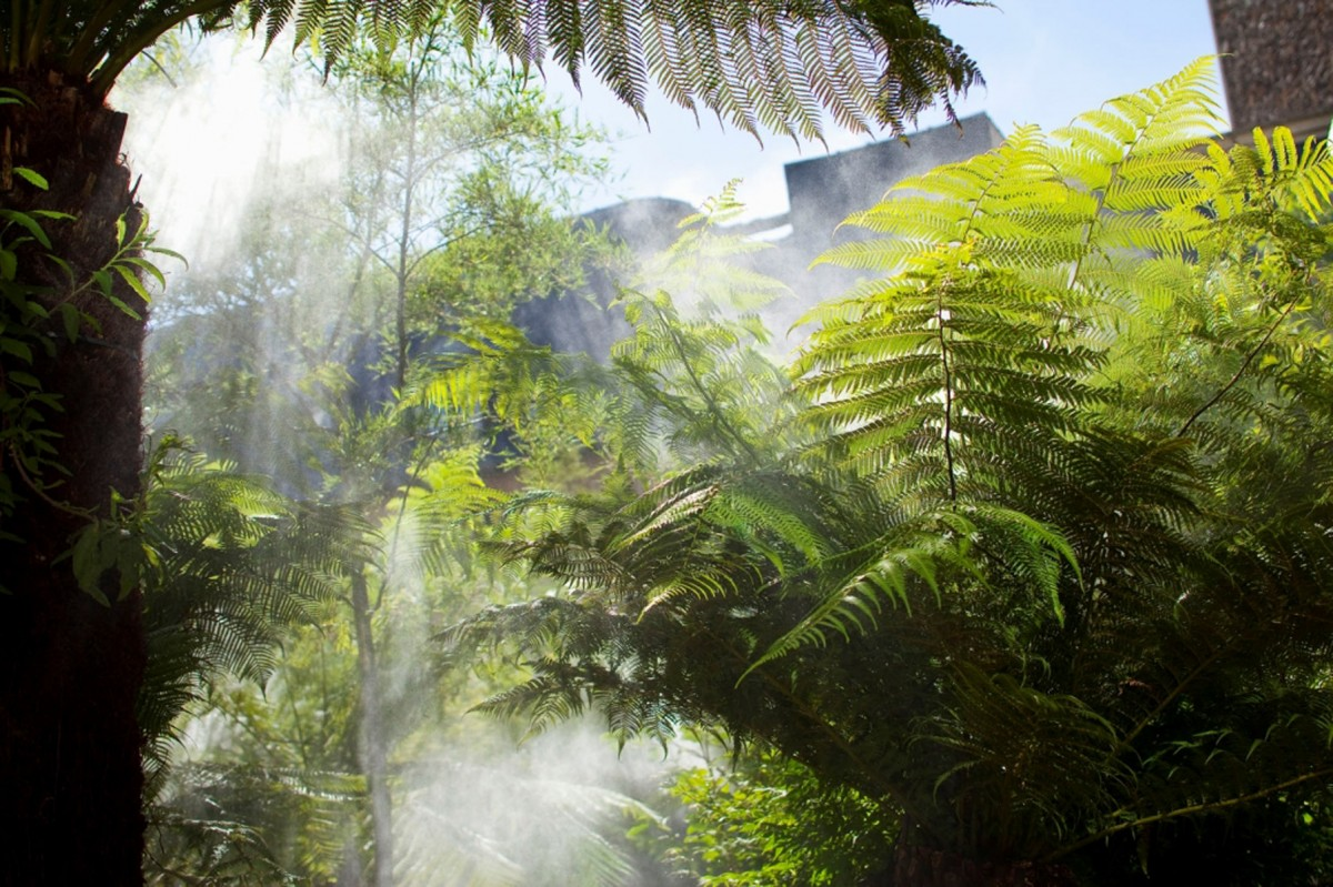 Brumisation dans le jardin de l'hôtel