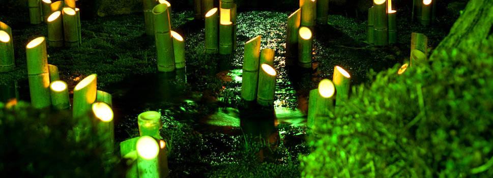 éclairage led dans un bassin