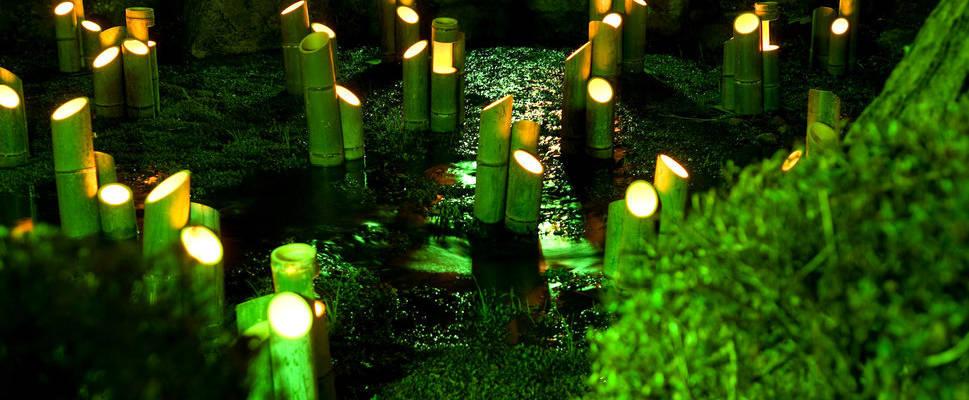 De la LED dans nos jardins