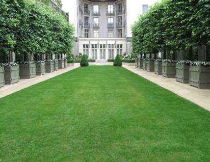 La grande pelouse du Ritz