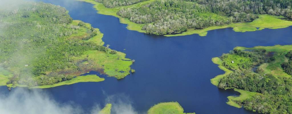 La végétation et son arrosage: une solution contre le changement climatique.